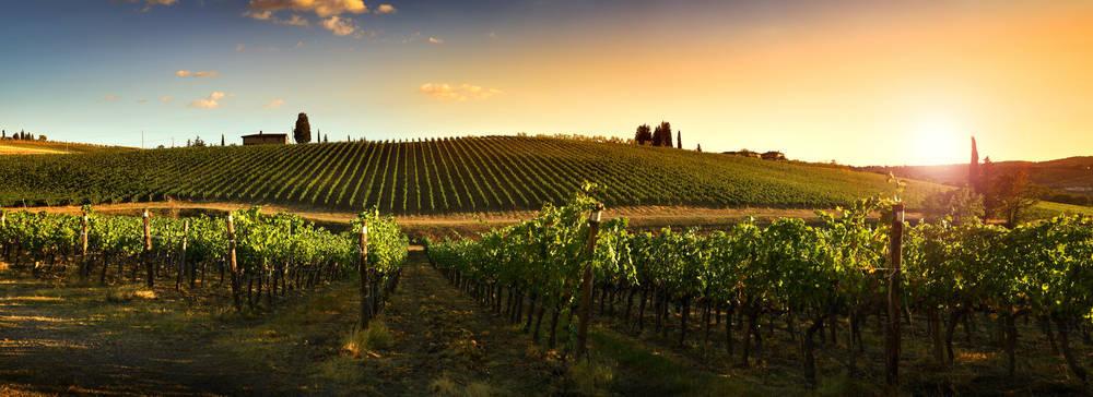 Países vinícolas poco conocidos