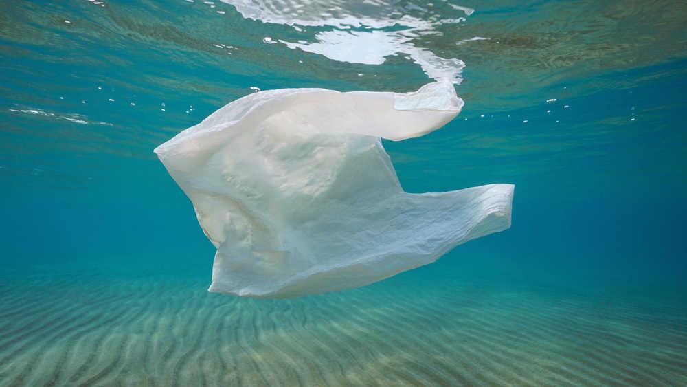 El medio ambiente y las bolsas